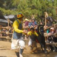 d-winning-a-prize-isaji