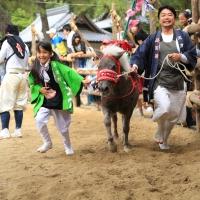d-winning-a-prize-simokawa