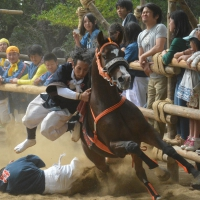 d-winning-a-prize-tamai