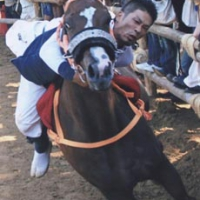 omanto2010_14