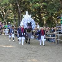 d-winning-asaoka