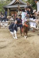 d-winning-a-prize-saito