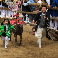 c-chunichi-shimokawa-daregahayainokana