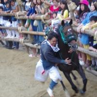 d-winning-a-prize-miyata