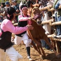 d-winning-a-prize-nakagawa