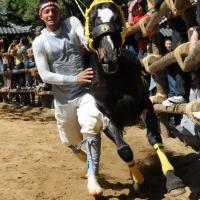 d-winning-imamura