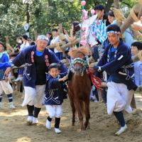d-winning-shimokawa