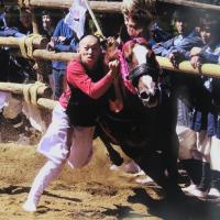 d-winning-takahashi
