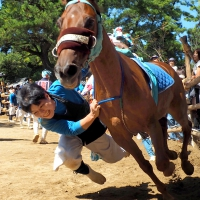 d-winning-takashima
